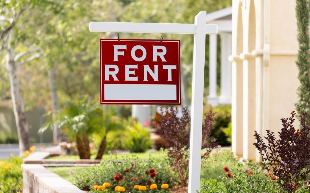 How to spot a scam rental Ad!