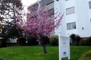 1122 McKenzie Street, Victoria, V8V 2W2, 1 Bedroom Bedrooms, ,1 BathroomBathrooms,Apartment,Residential,McKenzie Street ,1108