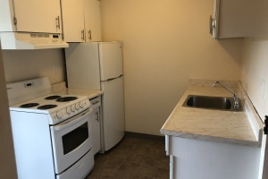 315-420 Catherine street, Victoria, v9a3t2, ,1 BathroomBathrooms,Apartment,Residential,Catherine street,2447