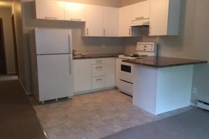 2-1717 Fernwood road, Victoria, v8t2y3, 1 Bedroom Bedrooms, ,1 BathroomBathrooms,Lower suite,Residential,Fernwood road ,2574