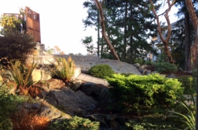 2619 Ruby Court, Victoria, V9B 0A9, 1 Bedroom Bedrooms, ,1 BathroomBathrooms,Lower suite,Residential,Ruby Court ,1554