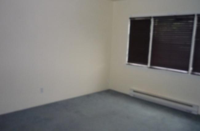 1216 Hillside Ave, Victoria, V8T 2B2, 2 Bedrooms Bedrooms, ,1 BathroomBathrooms,Upper Suite,Residential,Hillside Ave ,1563