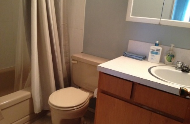 1760 Fort Street, Victoria, V8R 1J4, 1 Bedroom Bedrooms, ,1 BathroomBathrooms,Apartment,Residential,Fort Street ,1635